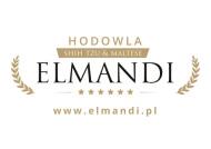 Elmandi